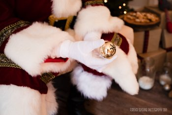 View More: http://foreversunshine.pass.us/santa-promo-2018